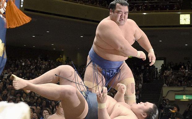 Vedere Sumo al Ryogoku di Tokyo