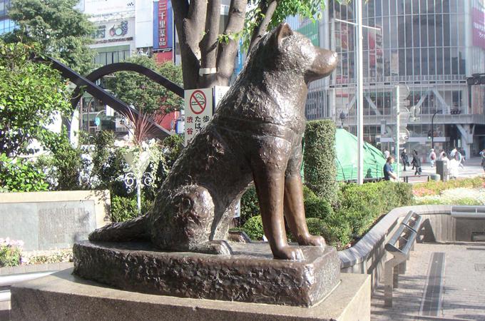 Hachiko Il quartiere di Shibuya a Tokyo