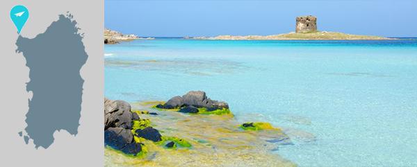stintino 5 luoghi da visitare in Sardegna