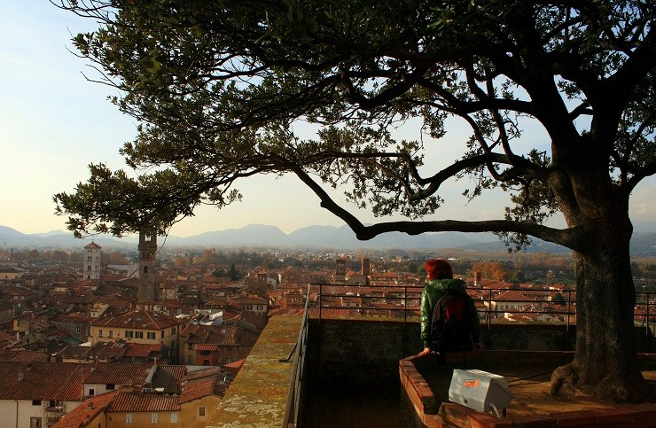 Torre di Guinigi – La torre con il giardino sopra a Lucca