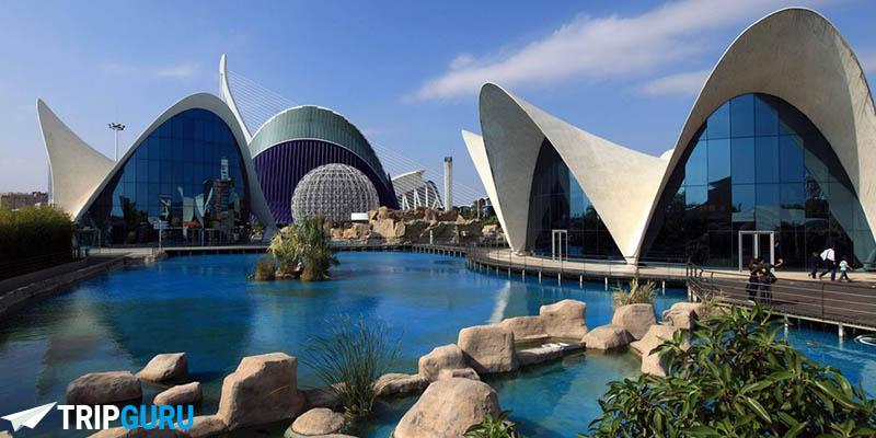Parco oceanografico di Valencia